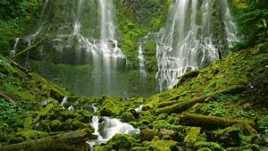 Water, Nature, Trees, Waterfalls, Desktop, Hd, Wallpaper, 305871, Wallpapers13, Com