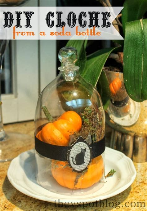 diy cloche   soda bottle   spot