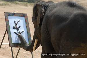 Elephant Painting at Elephant Conservation Centre (Lampang ...