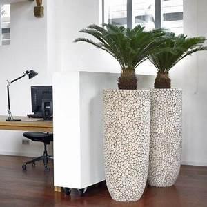 Jardiniere Interieur : jardini re d 39 int rieur natural trendy wood jardinchic ~ Melissatoandfro.com Idées de Décoration