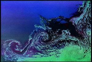 Uw Oceanography Faculty  Peter B  Rhines