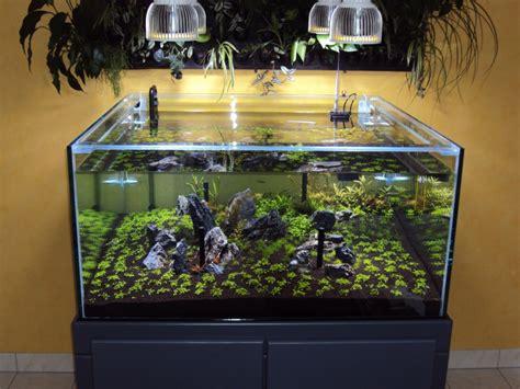 Orphek Pr72 Planted Aquarium Led Lighting