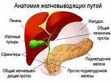 Лекарства при лечение желчного пузыря и печени