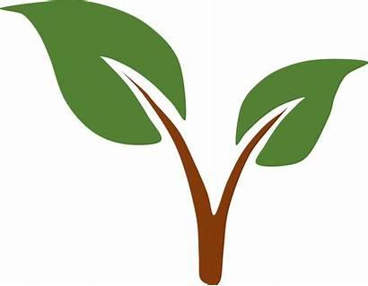 Environmental Clipart Environment Clip Science Logos Cliparts