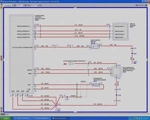 Holophane Predator Light Wiring Diagram