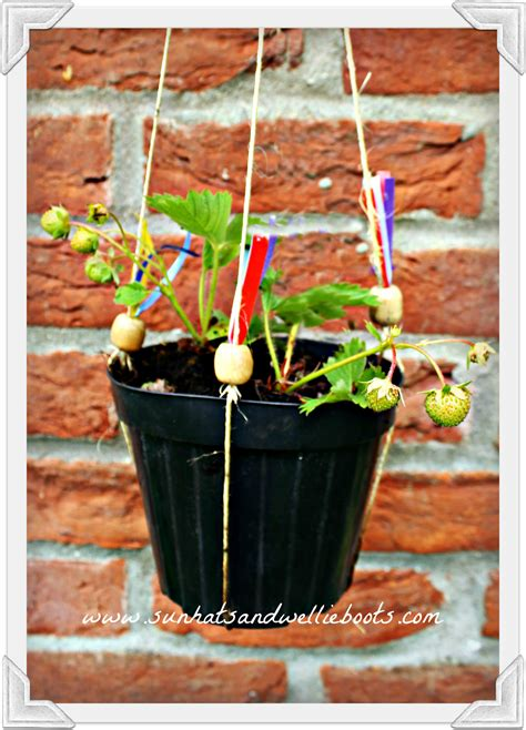 hanging strawberry planter sun hats wellie boots simple hanging strawberry