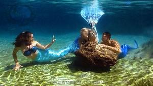 Real Life Mermaid Picture Gallery « Professional Mermaid ...
