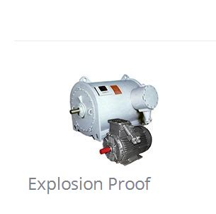 Electric Motor Selection by Umeb Sa Electric Motors Ac Electric Motors