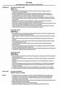 Internal Audit Manager Resume