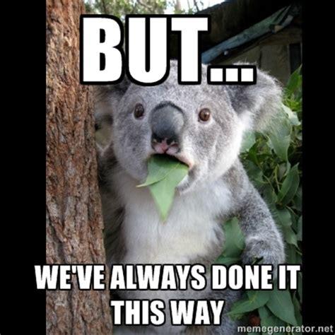 Memes About Change - change resistant koala lean memes