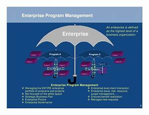 Program Mgmt Overview