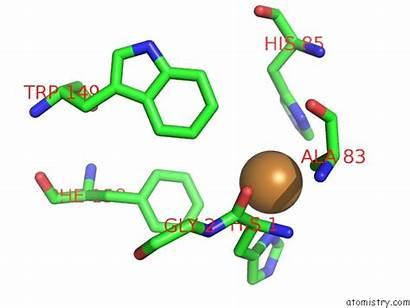 Copper Pdb Polysaccharide Monooxygenase Bacillus Thuringiensis Lytic