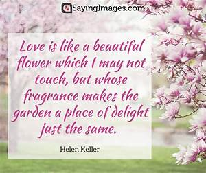 42 Beautiful Flower Quotes | SayingImages.com