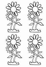 Para Colorear Margaritas Dibujos Coloring Pintar Flowers Margarita Dibujo Euroresidentes sketch template