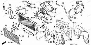 Honda Motorcycle 2001 Oem Parts Diagram For Radiator