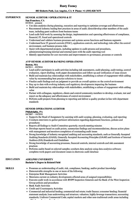 operations auditor resume samples velvet jobs