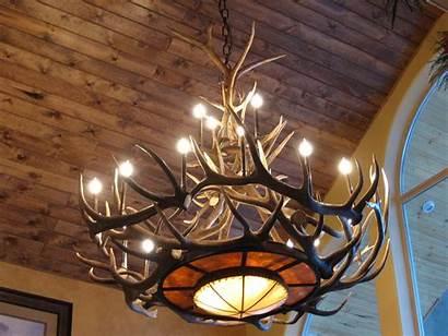 Fixtures Antler Elk Ceiling Decor
