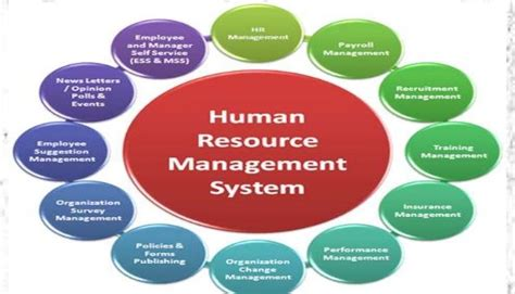 The Growing Complexity Of Hr Management Functionvteki. Nationwide Kia Service Subaru Impreza Wrx Mpg. Top College For Physical Therapy. Buying Salvage Cars From Insurance Companies. Online Software Development Degree. San Antonio Sprinkler System. Inventory Management Ecommerce. Metlife Long Term Disability Insurance. Discover Card No Annual Fee Html Email Link