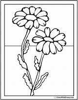 Daisy Coloring Pages Flower Spring Painting Flowers Colorwithfuzzy Glass Designs Outline Paint sketch template