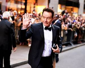 Bryan Cranston Used to Officiate Weddings and There's Evidence