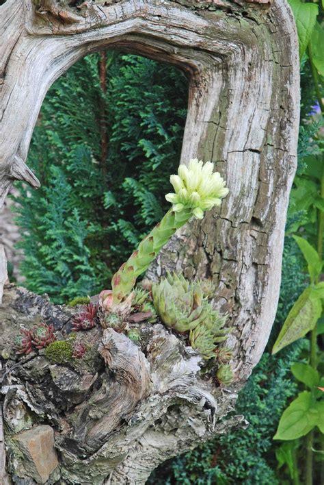 Garten Dekoration Holz by Gartendeko Aus Altem Holz