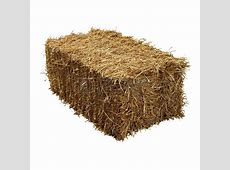 Bales of Hay PAWS Animal Rescue