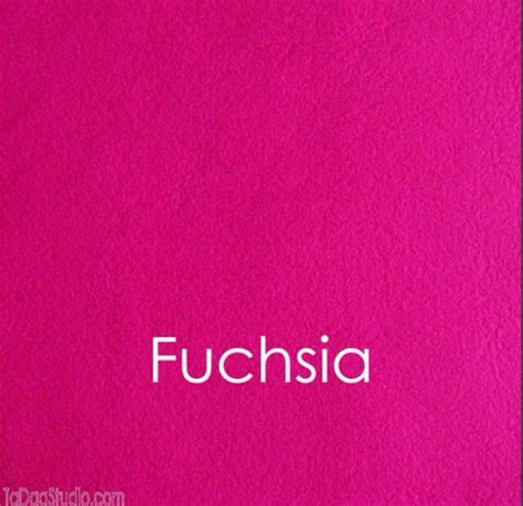 the color fuschia lovely what color is fuschia 7 fuschia color fuchsia