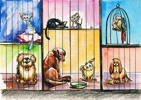 animal shelter illustrations royalty  vector