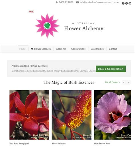 wordpressit website portfolio loretta faulkner logos branding