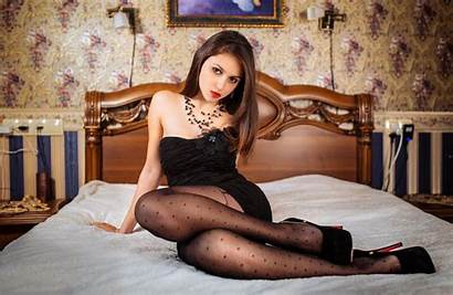 Bed Brunette Dog Wallpapers Pw Lips Android