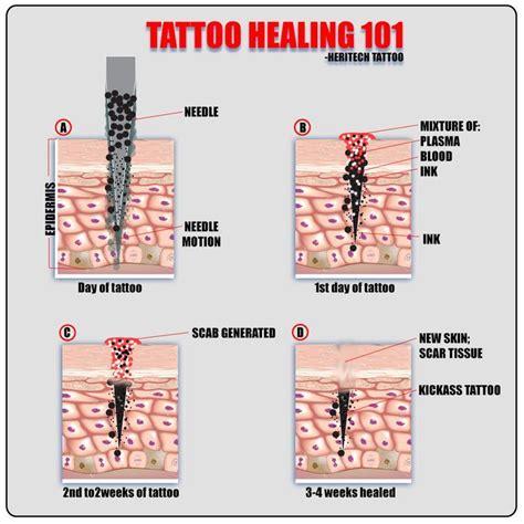 tattoo pain chart ideas  pinterest tattoo