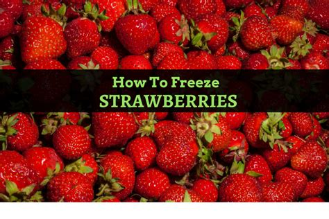 how to freeze strawberries how to freeze strawberries with 6 easy methods