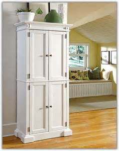 pantry cabinet for kitchen ikea home design ideas