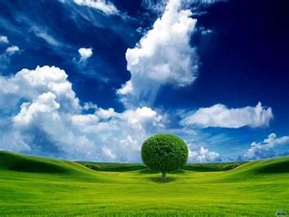 Sky Tree Screen Nature Background Desktop Pretty