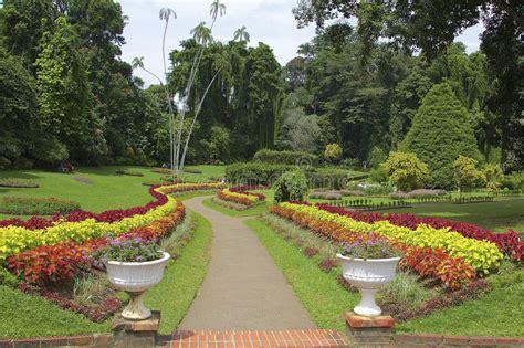 Botanischer Garten Garden Preise by K 246 Niglicher Botanischer Garten Peradeniya Sri Lanka