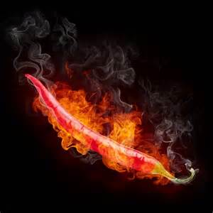 Hot Chili Pepper On Fire