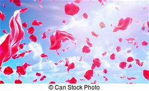 Rose petals Stock Footage and Video Clips. 2,795 Rose ...