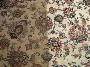 Nettoyage De Tapis : nettoyage de tapis a sec ils seront secs imm diatement ~ Melissatoandfro.com Idées de Décoration