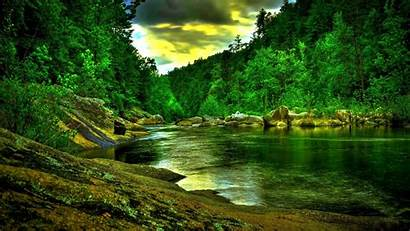 Forest Wallpapers River Wide