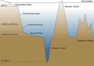 Oceanic Basin