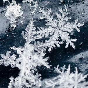 25 Amazing Snowflake Photography | Xemanhdep Photos ...