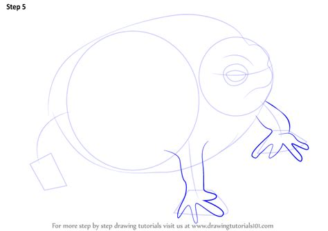 learn   draw  desert rain frog amphibians step