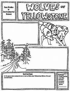 Wolves In Yellowstone Student Worksheet Answers Part 1