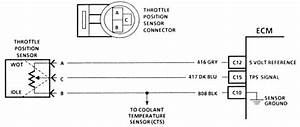 Ford Tps Wiring Diagram