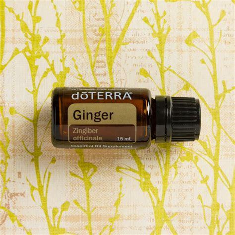 ginger oil   benefits essential oil spotlight