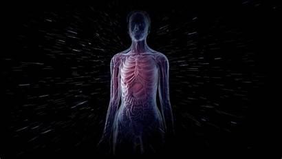 Human Radiation Space Risky Nasa