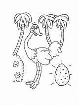 Ostrich Coloring Printable Animal Egg Colouring Preschool Animals Crafts Popular Ostriches Cartoon Kindergarten Activities Childrens Bestcoloringpagesforkids sketch template