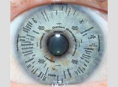 BaBlü® Akademien Iridologie Irisdiagnose Grundausbildung
