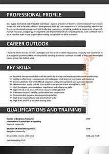 Cover Letter Examples Executive Executive Design 108 Select Resumes