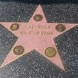 Hollywood Walk of Fame - Wikipedia Entries on Waymarking.com